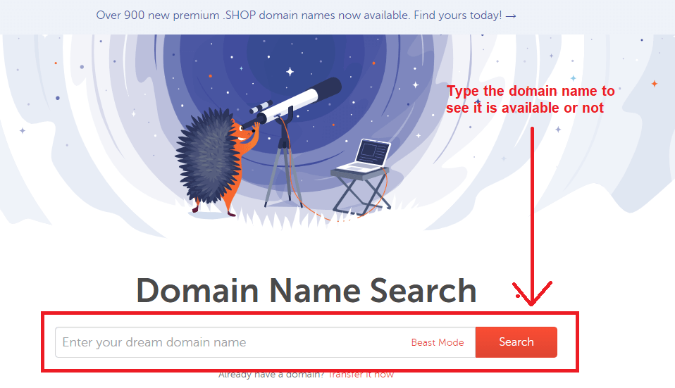 namecheap domain name